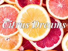 Load image into Gallery viewer, Citrus Dreams Body Wash
