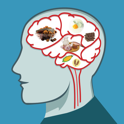 5 Brain Foods that will Help Your Child Study, Focus and  Concentrate Better