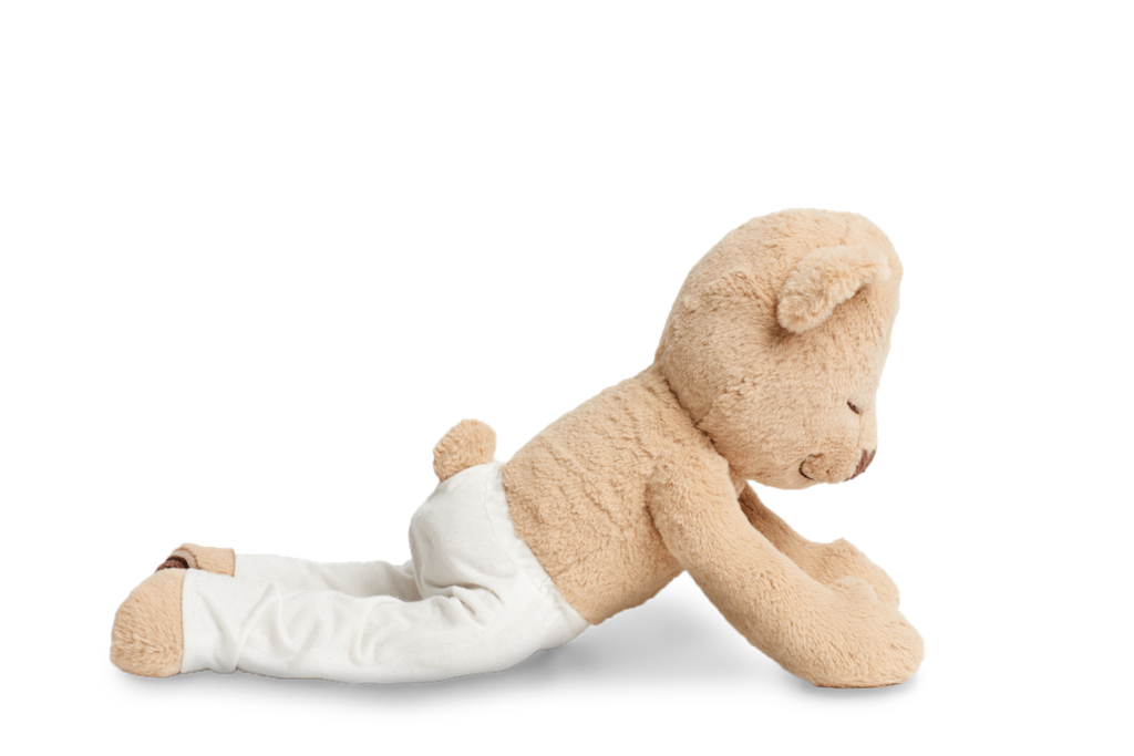 Learn How to do Cobra Pose with Meddy Teddy