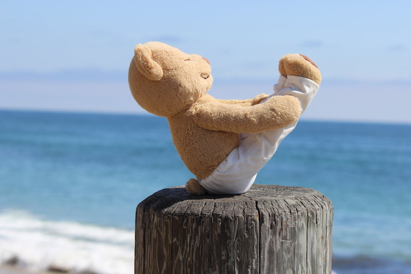 Learn How to do Boat Pose with Meddy Teddy