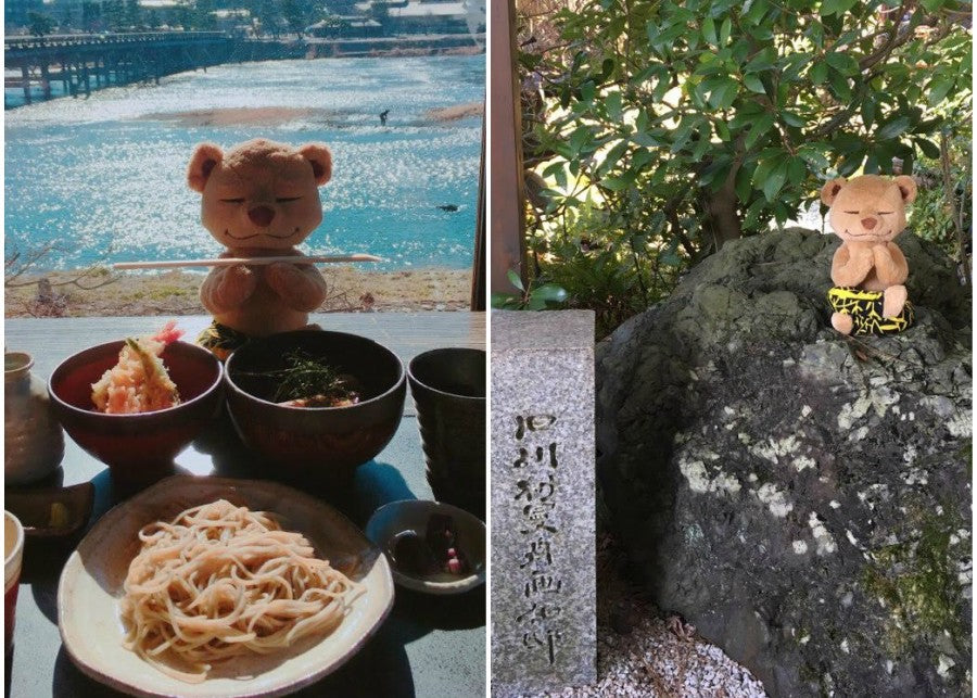 Meddy Teddy in Japan Yoga