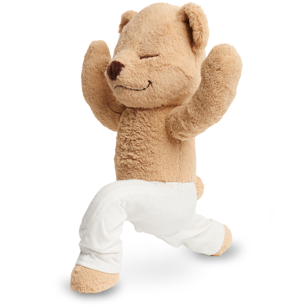 Learn How to do Warrior One Pose with Meddy Teddy
