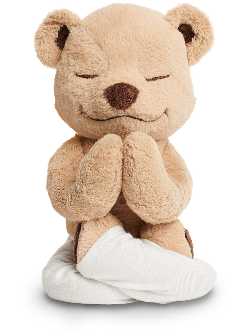 Meddy Teddy teaches yoga and meditation