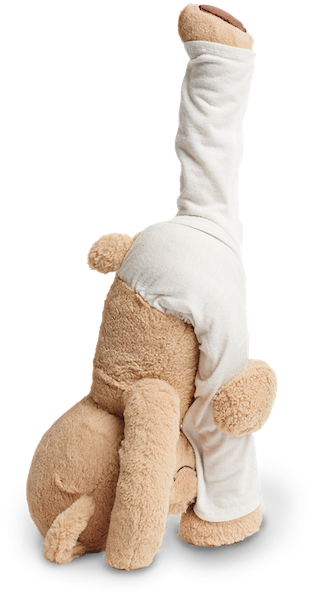 Standing Split Yoga Pose Meddy Teddy