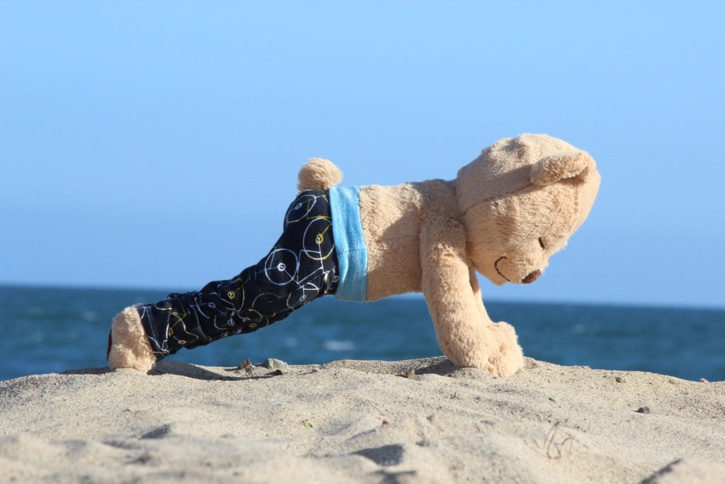 How to Do Plank Pose with Meddy Teddy