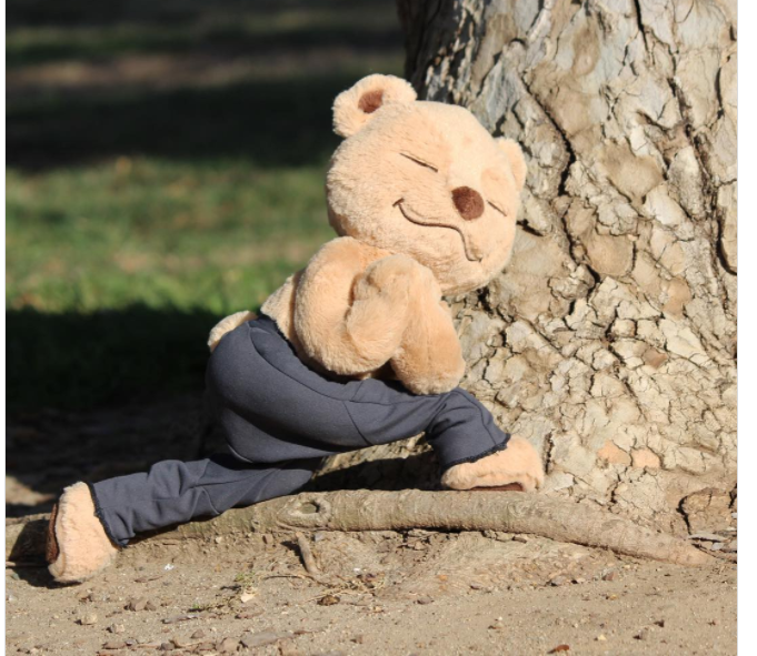 Revolved Crescent Lunge Pose Meddy Teddy