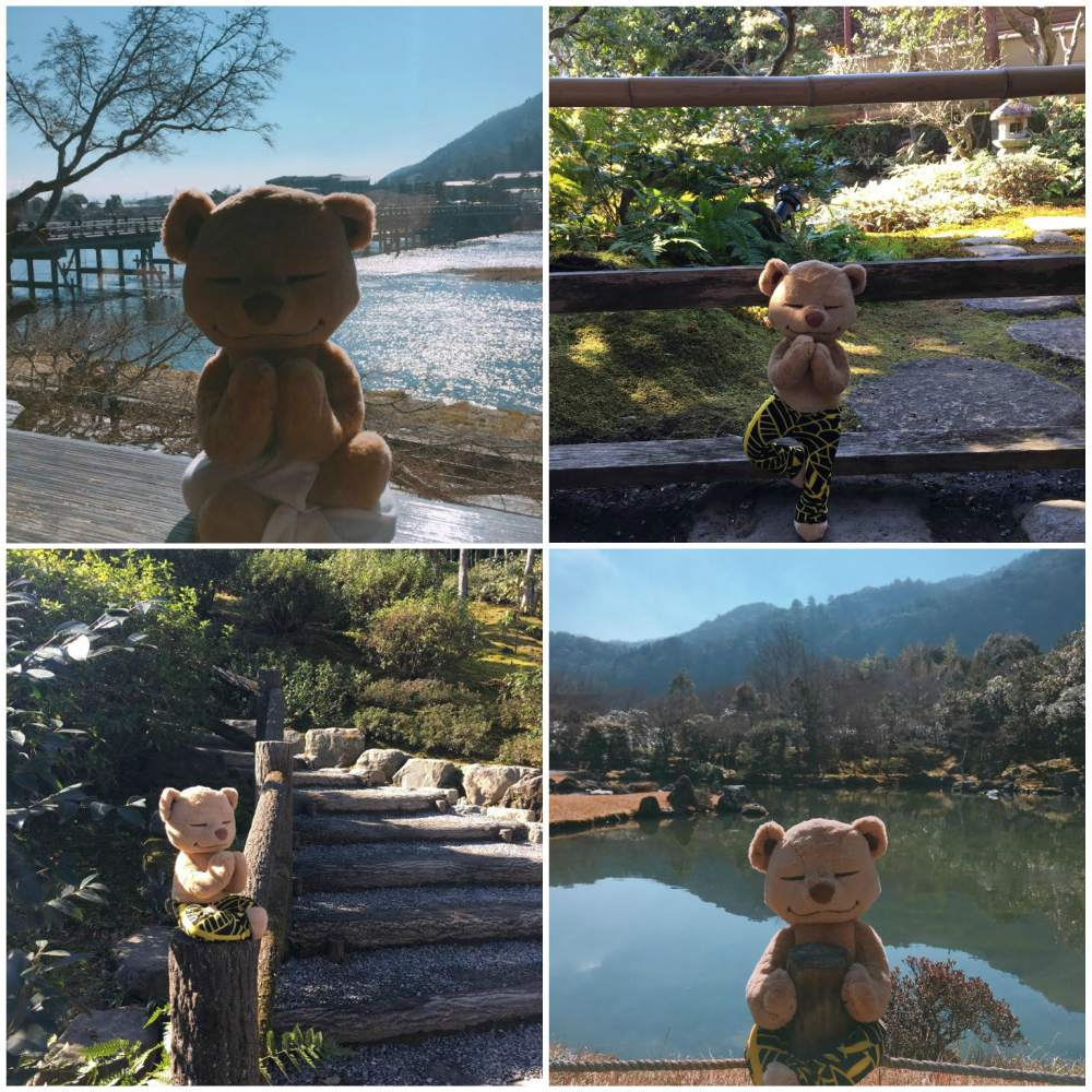 Yoga Scene with Meddy Teddy in Japan
