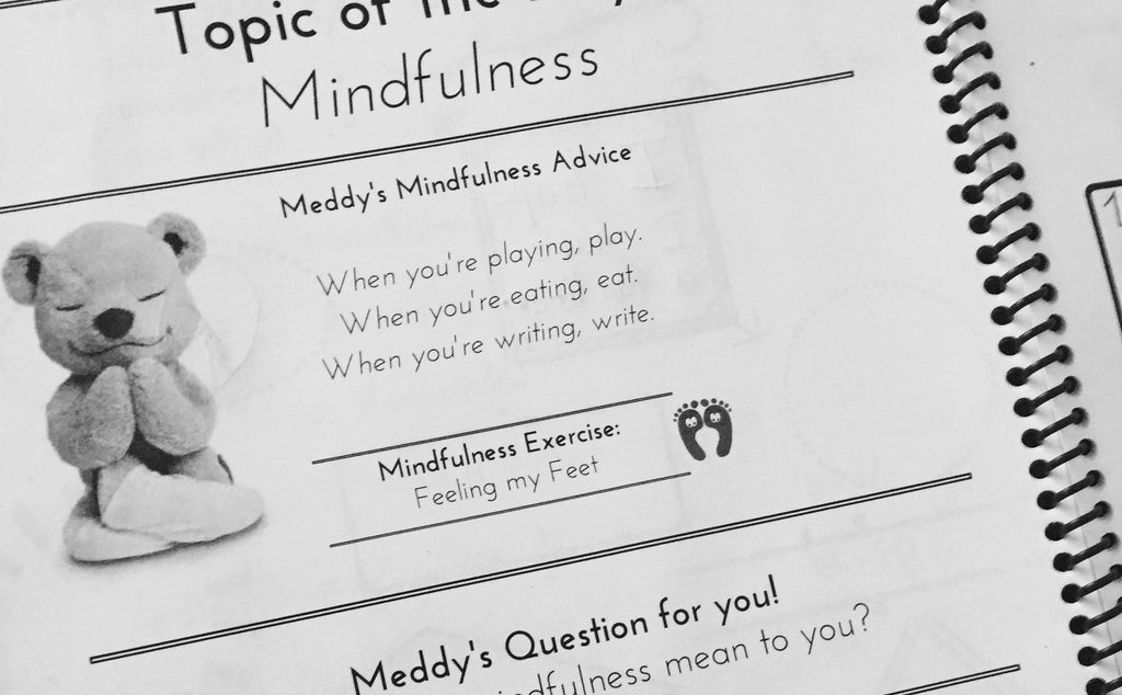 meddy teddy's mindful workbook