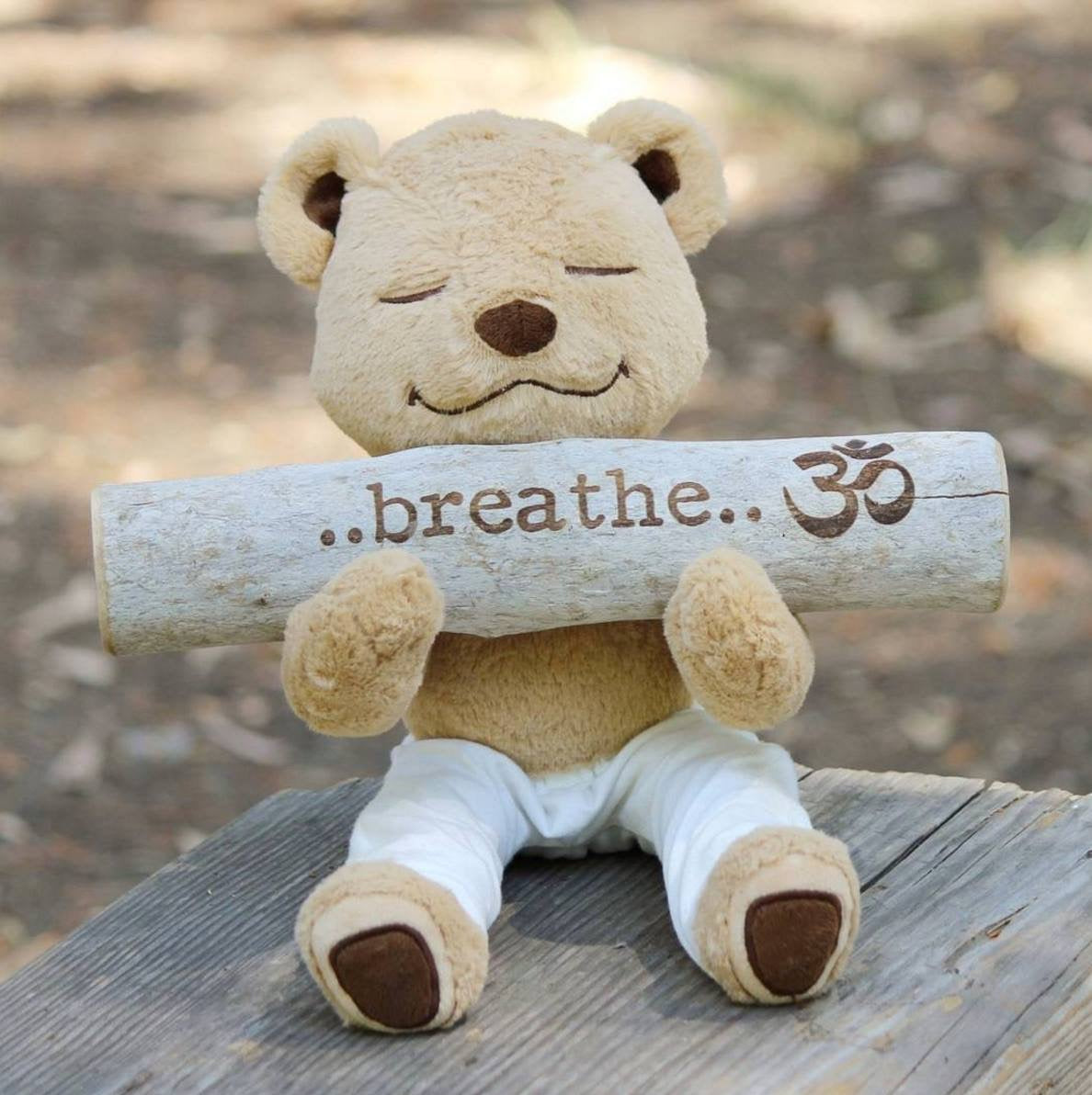 Learn to Breathe with Meddy Teddy