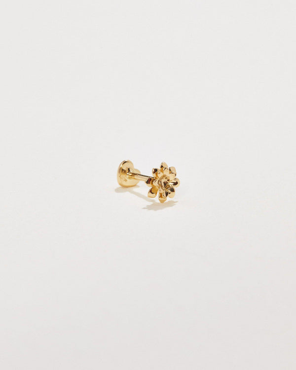 gold anemone flower stud
