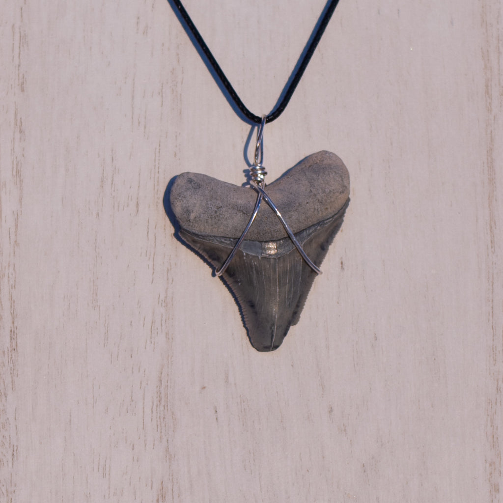 Grey Megalodon Necklace