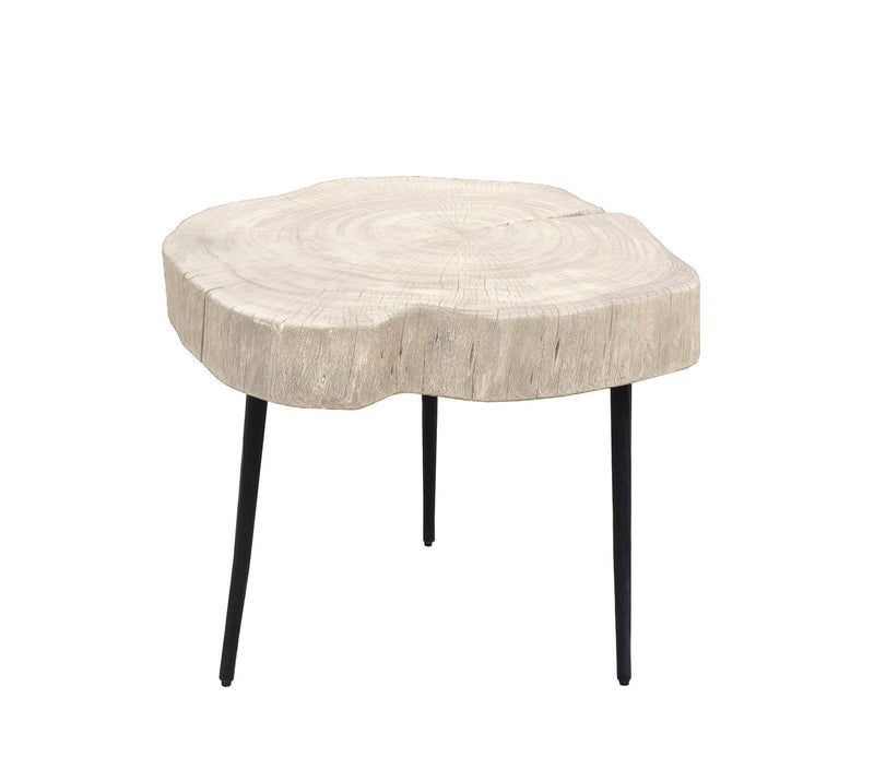 Organic Trunk Side Table - White Wash