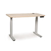 Invigo Sit-Stand Desks W/ Pencil Drawer and Modesty Panel
