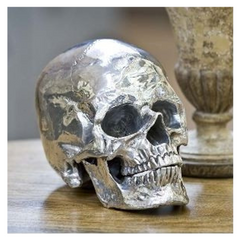 Polished Metal Skull