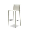 Kaz Counter Stool