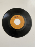 Frank Sinatra - You and Me (We Wanted It All) | 45