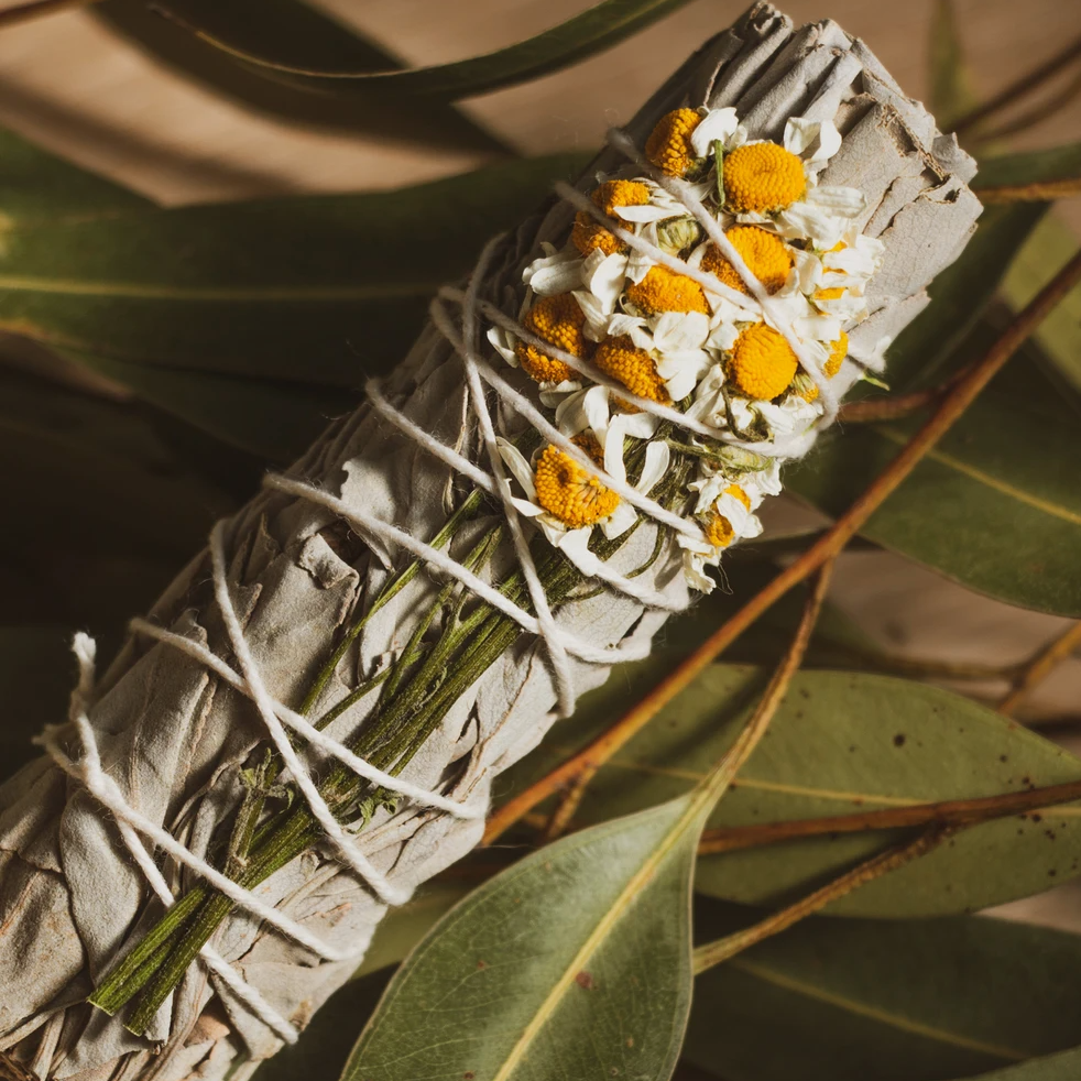 Kindred Row | SAGE SMUDGE STICK | chamomile california