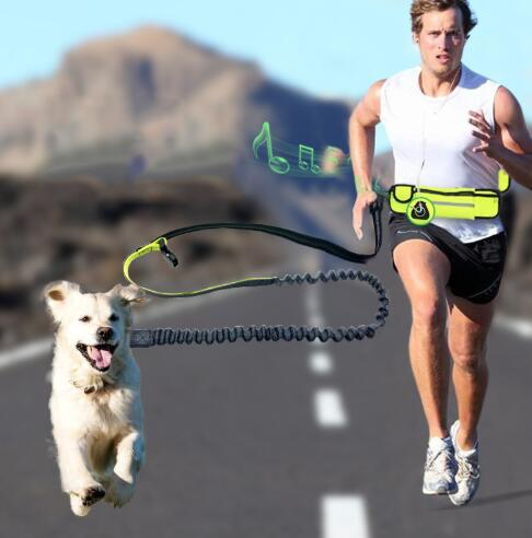 Waterproof Pockets Sport Running Jogging Bungee Dog Leash Hands