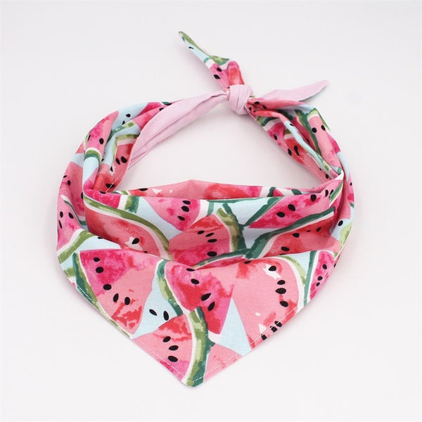 Watermelon Collar Bow Tie  with Metal Buckle