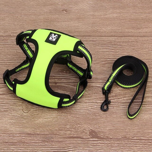 Reflective Harness for French Bulldog