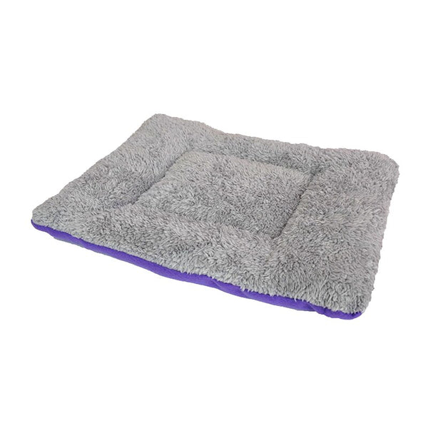 Bed For French Bulldog
