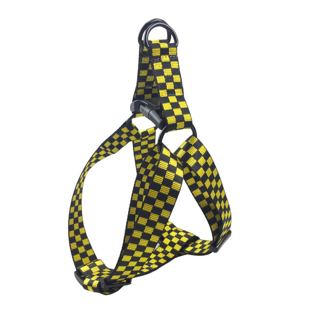 Adjustable Walking and Training Harness