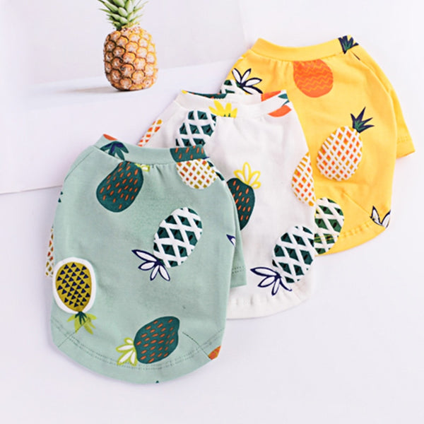 Giveaway-Pineapple Vest For your French Bulldog