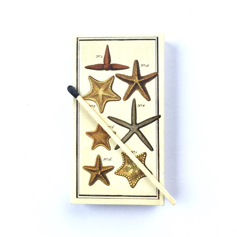 Starfish Candle Matches