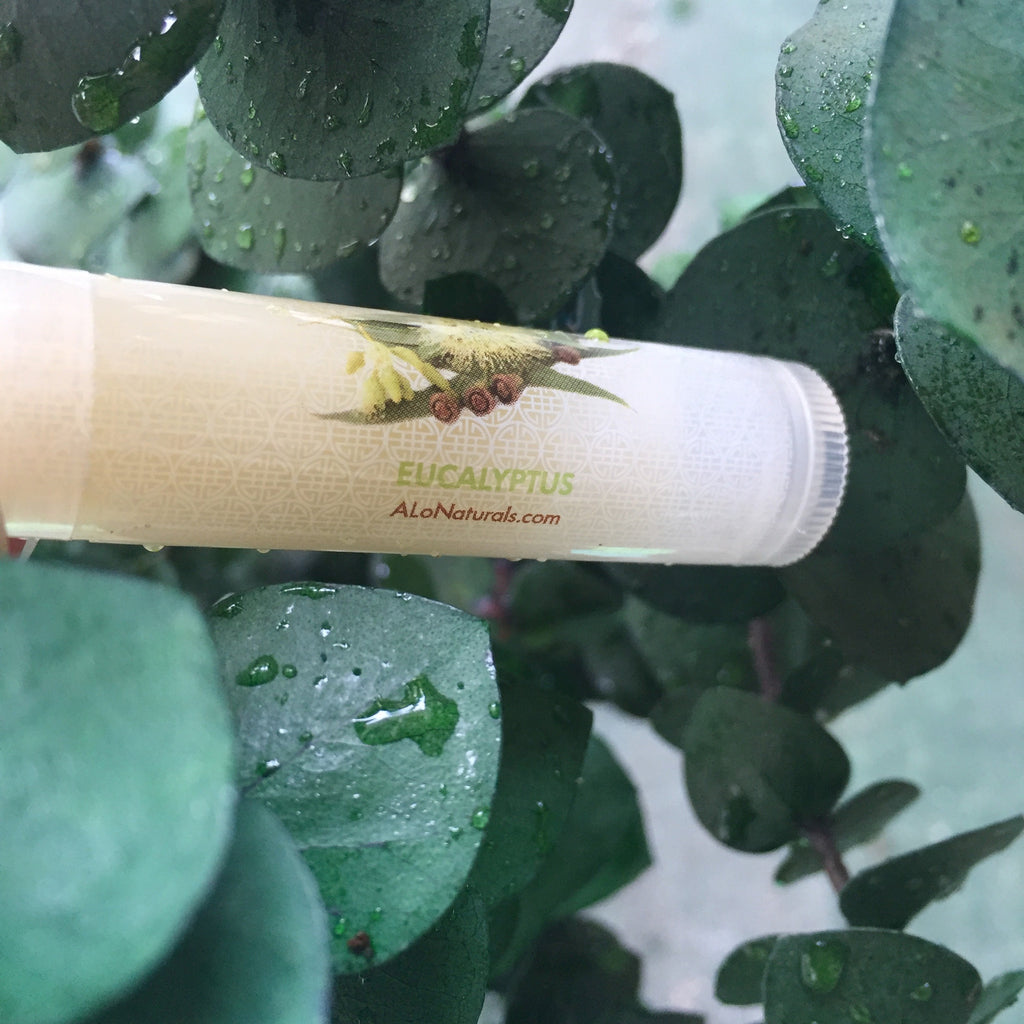 This lip balm contains vitamins A, B, D, E, and protein. It increases collagen production, has anti-aging properties, and aids in heal cold sores.  Eucalyptus is effective for treating many respiratory problems including cold, cough, runny nose, sore throat, asthma, nasal congestion, bronchitis, and sinusitis. It also serves as a stimulant.
