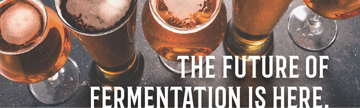 Craft a Brew - The Catalyst Fermentation System Header banner