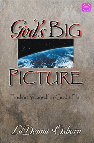 God's Big Picture - Digital Book