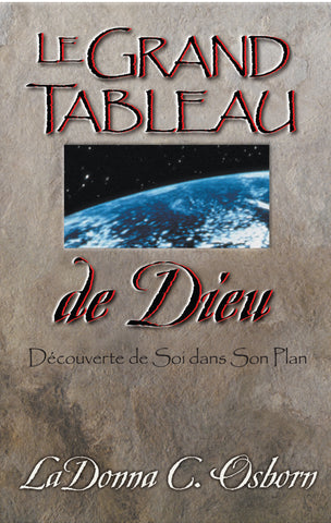 God's Big Picture - Digital Book | French