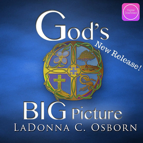 God's Big Picture - Digital Audio