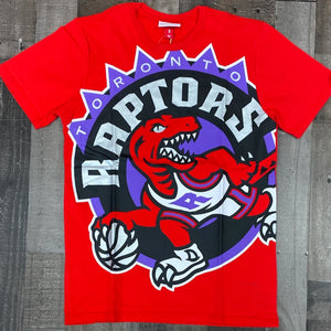 NBA BIG FACE SS TEE TORONTO RAPTORS