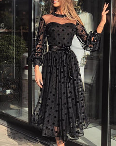 Mesh Polka Dot Long Sleeve Sexy Dress Long Skirt