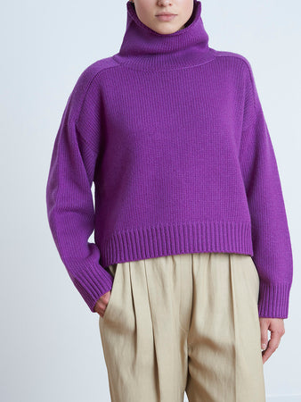Procida Wool Blend Turtle Neck Sweater