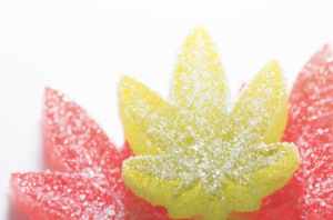 5 Most Commonly Asked Questions about CBD Gummies, Answered