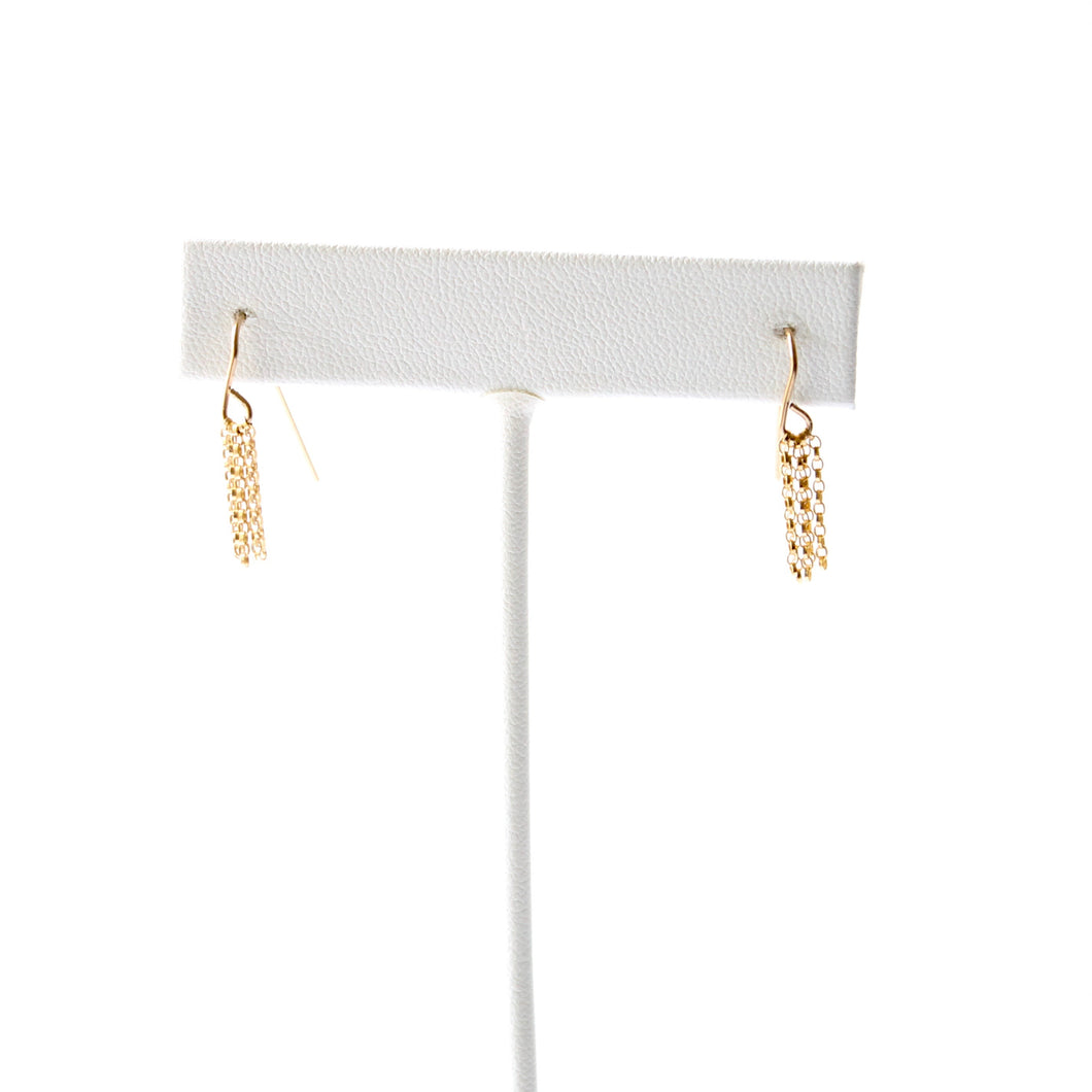 Tiny Fringe Earrings - 14k Gold Filled