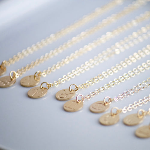 Zodiac Charm Necklace | Little Hawk Jewelry | Gold Charm Necklace