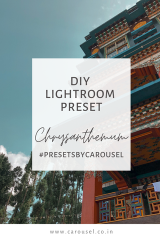 DIY PRESET - Chrysanthemum