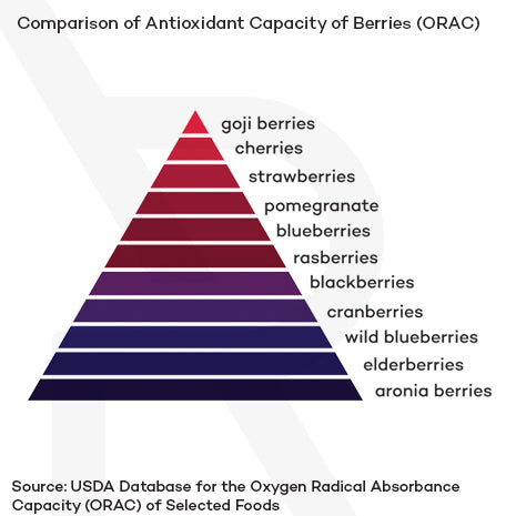Comparison of Antioxidant capacity of berries. This graph depicts aronia berries as the top antioxidant producing berry over elderberries, wild blueberries, cranberries, blackberries, raspberries, blueberries, pomegranate, strawberries, cherries, goji berries and in that order.