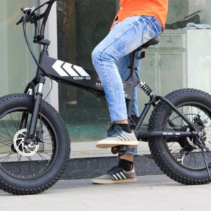 Explore The Array Of Innovative E-Bikes From Swagtron