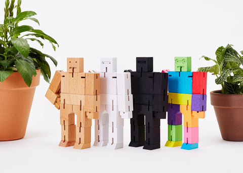 Cubebot® Small Basic Bundle