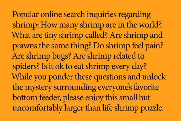little puzzle thing® - Shrimp