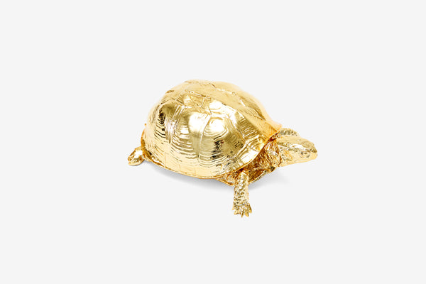 Reality Box Turtle Box - Gold