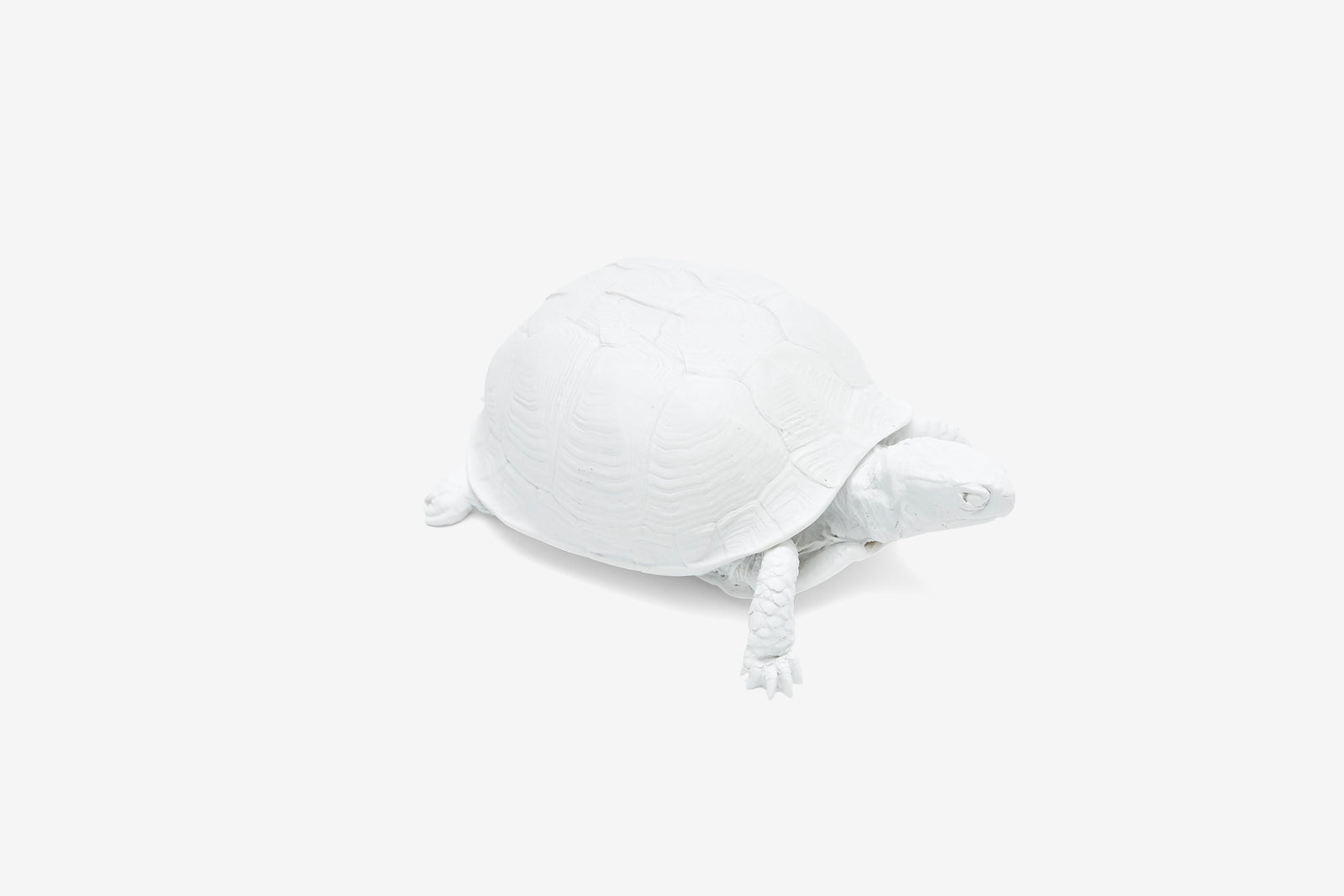 Reality Box Turtle Box - White