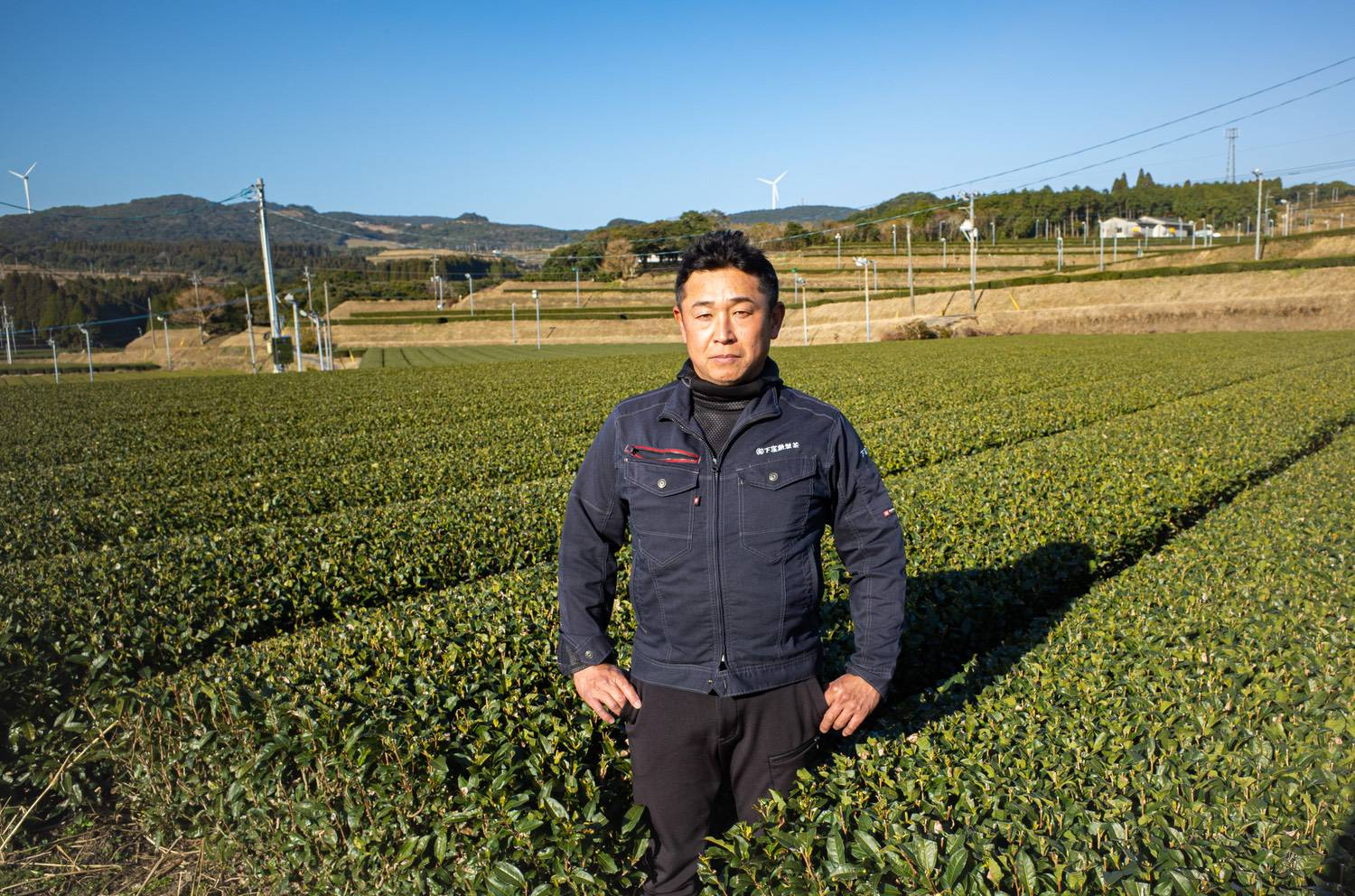 Tea making with passion and effort. Chiran's leading tea producer|Shimokubo Isao Tea Factory in Minamikyushu City, Kagoshima