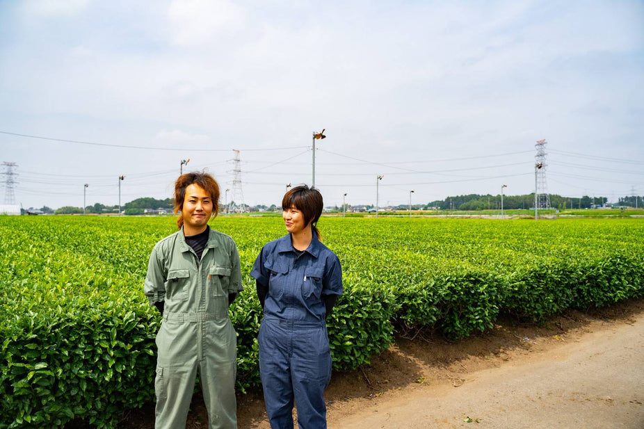A young tea producer dedicated to infinite possibilities of tea. | Ishiyama Tea Factory in Sashima, Ibaraki