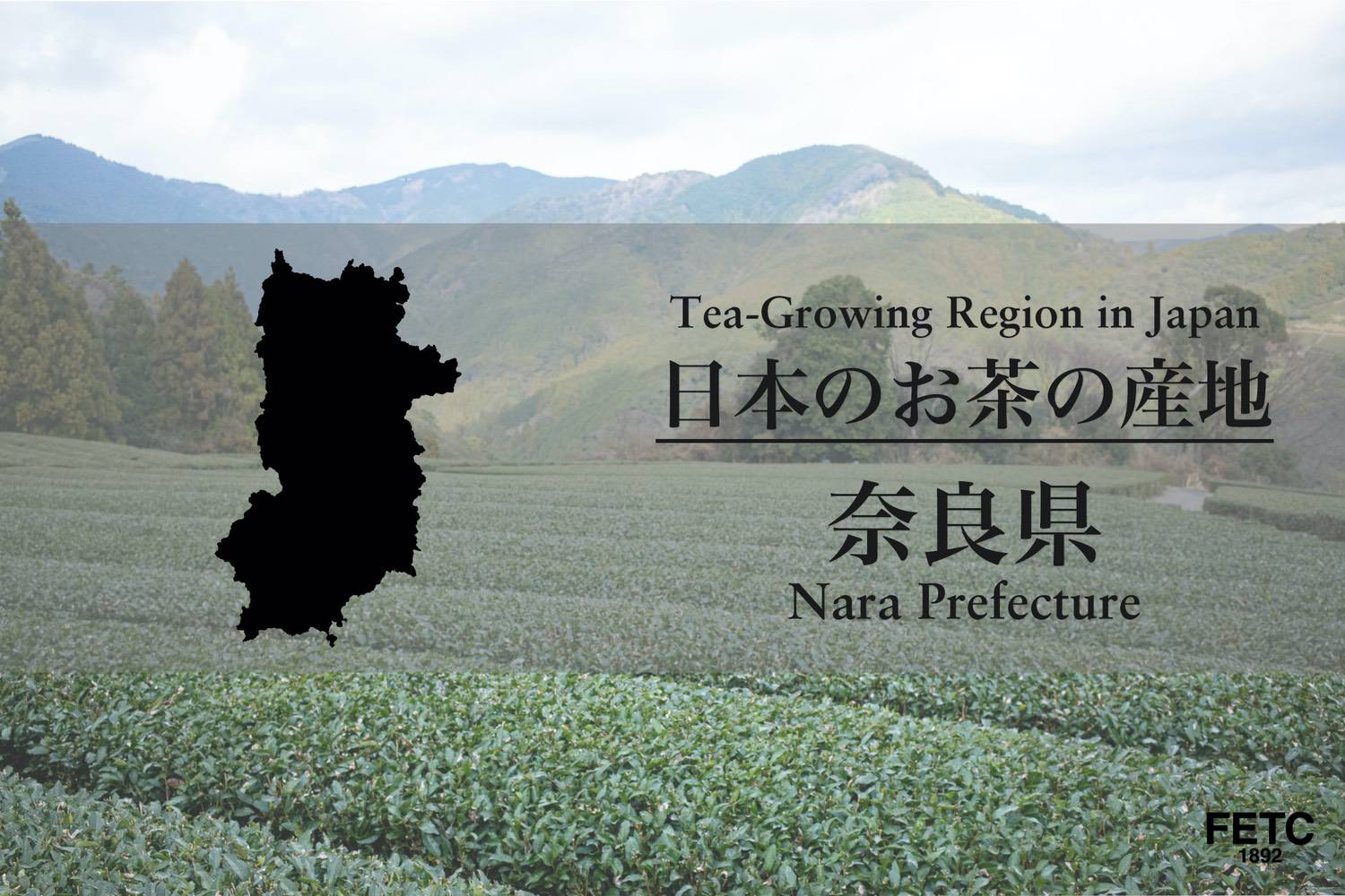 Tea-Growing Region In Japan | Nara Prefecture