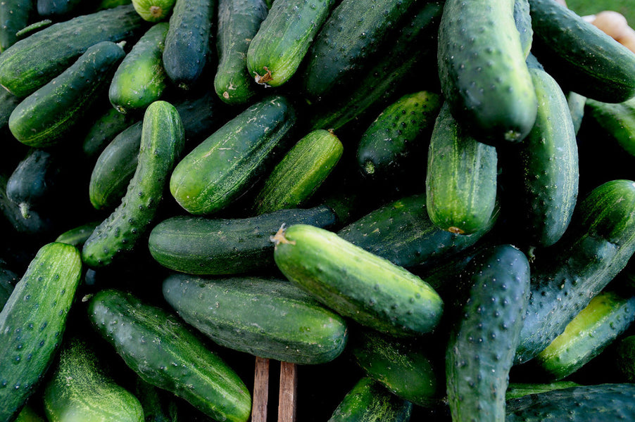 Top 5 Health Benefits of Cucumber!